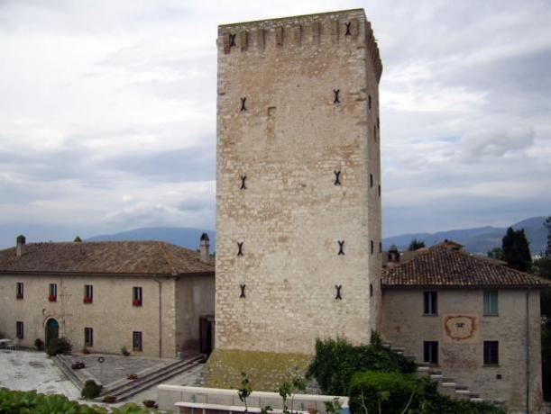 Agriturismo Umbria con visite guidate azienda vinicola