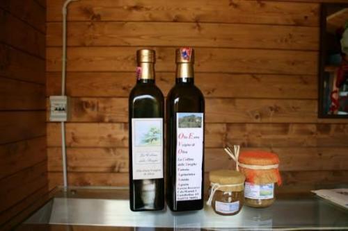 Ristorante con prodotti biologici, B&B Castelbellino