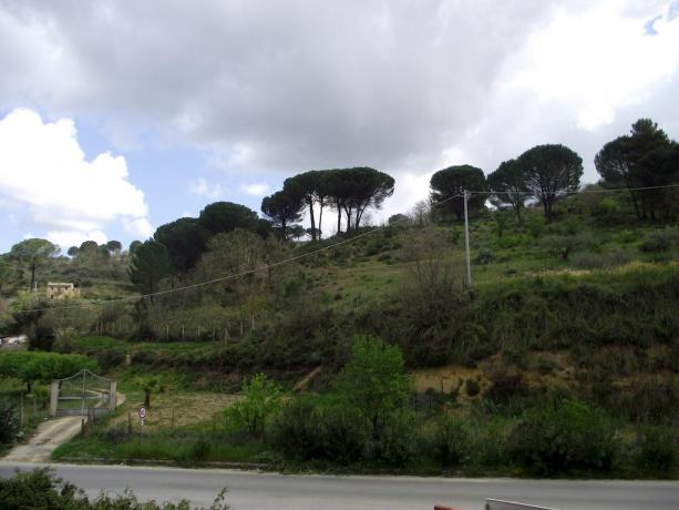 Hotel vicino Catania con enorme spazio verde