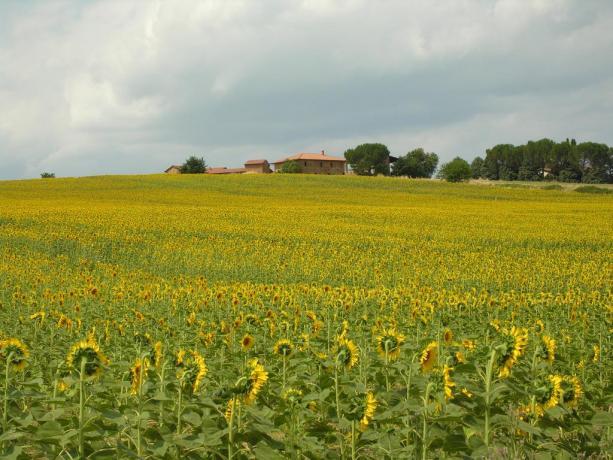 Agriturismo Umbria adatto per escursioni e passeggiate