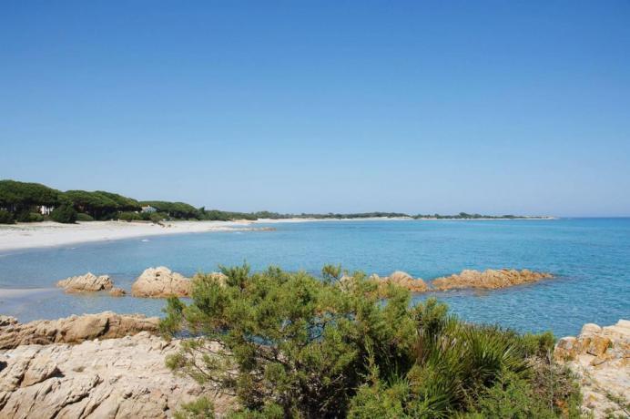 Il mare della Sardegna a Orosei