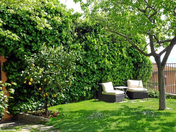 Giardino con area relax B&B Castiglione del Lago