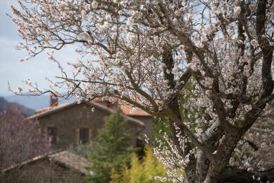 Casolare con camere vicino Gubbio