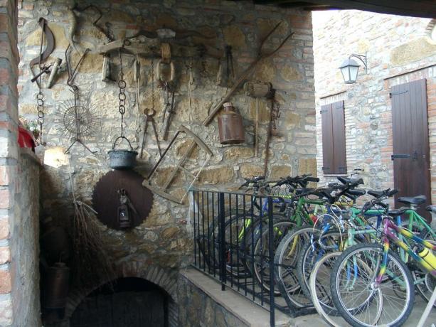 Noleggio bici agriturismo vicino Chiusi