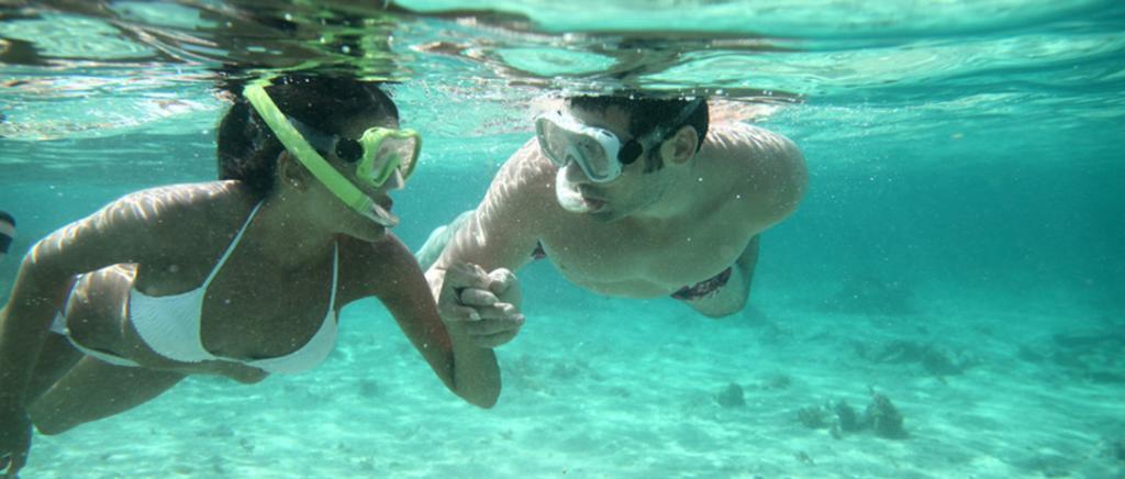 Snorkeling sulla Spiaggia del Villaggio Palinuro