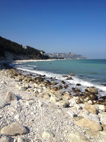 B&B sulla Spiaggia Riviera del Conero