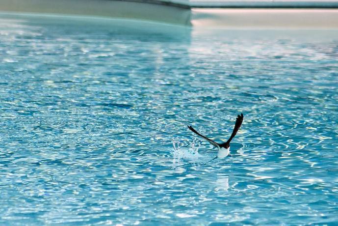 Agriturismo con piscina nei pressi di Terni