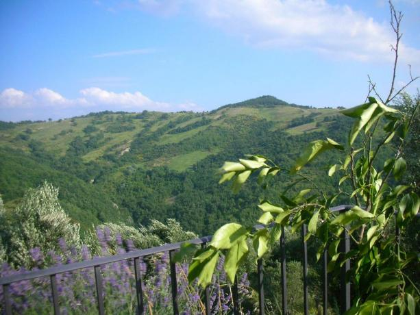 Agriturismo Perugia ideale per famiglie