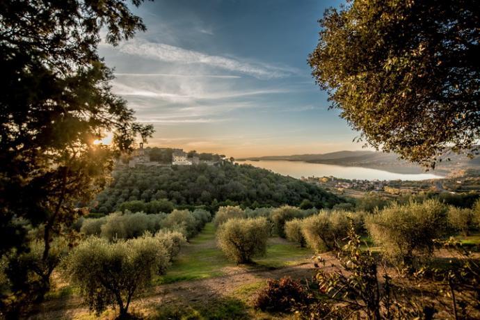 Villa lusso Lago Trasimeno: Panorama