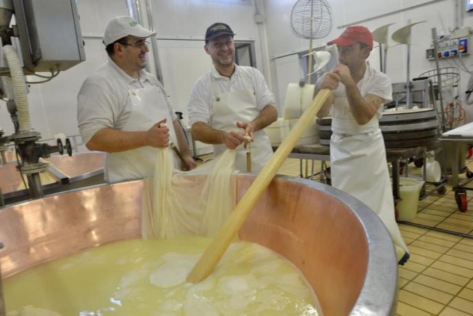 visita caseifici con degustazione formaggio parmigiano reggiano
