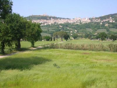 VIsta su Assisi dall'Agriturismo