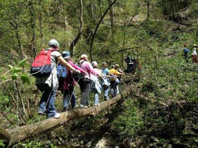 Holidays and Schooltrips to the italian regionalpark