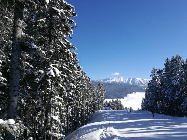 Vacanze sulla neve a Lavarone-Trento hotel 3stelle