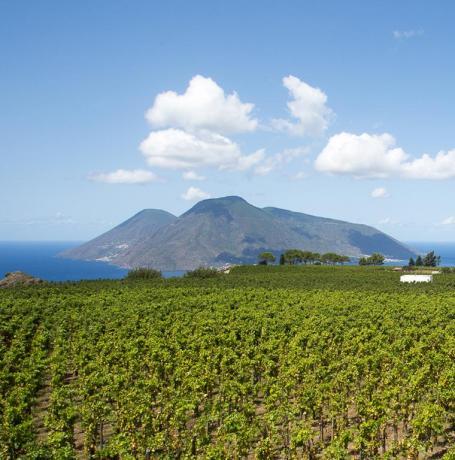 Relais Lipari 2km mare vendita vino Sicilia