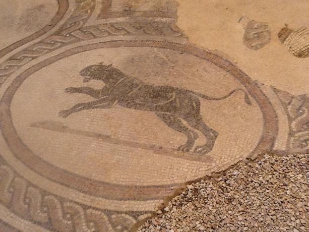 Mosaici Villa Spello