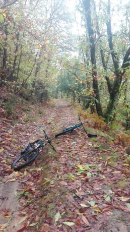 Percorsi mountain bike Agriturismo a Carro Liguria