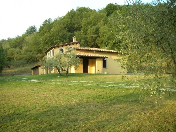 External view  of Villa Bettona between olive trees