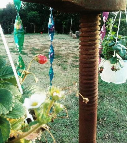 Casa vacanze con giardino vicino Orte
