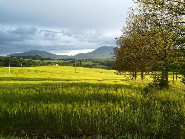 Escurzioni a cavallo e Montanbike agriturismo in Umbria