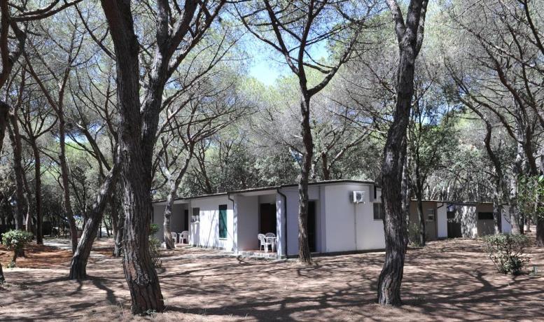 Appartamenti Baia Domizia con veranda per 4-5-6 persone