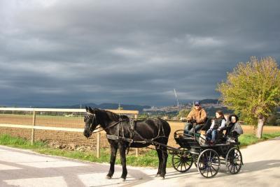 passeggiate in carrozza per la famiglia vicino Assisi