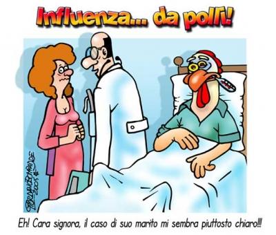 Vignetta   Influenza Polli   Umorismo   Fumetti