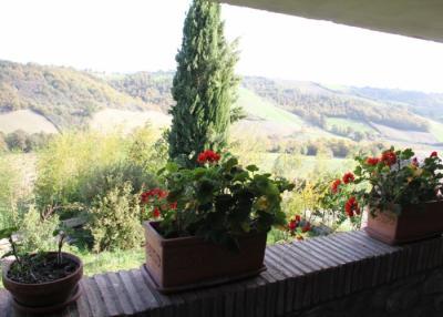 Appartamento Moraiolo, vista panoramica