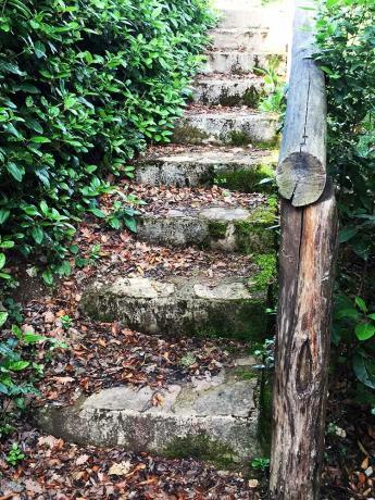 Villa nel Verde ad Arezzo per Ragazzi
