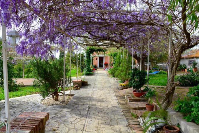 Cortile con giardino B&B a Genzano di Roma