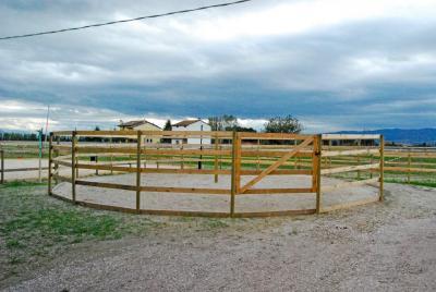 tondino in sabbia per addestramento cavalli centro equestre
