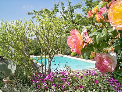 Holiday Houses with pool for rent in Italy