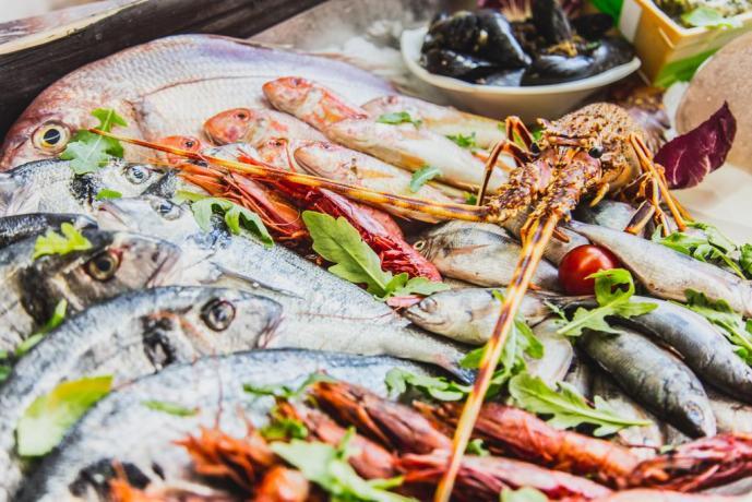 Ristorazione: pesce fresco mediterraneo