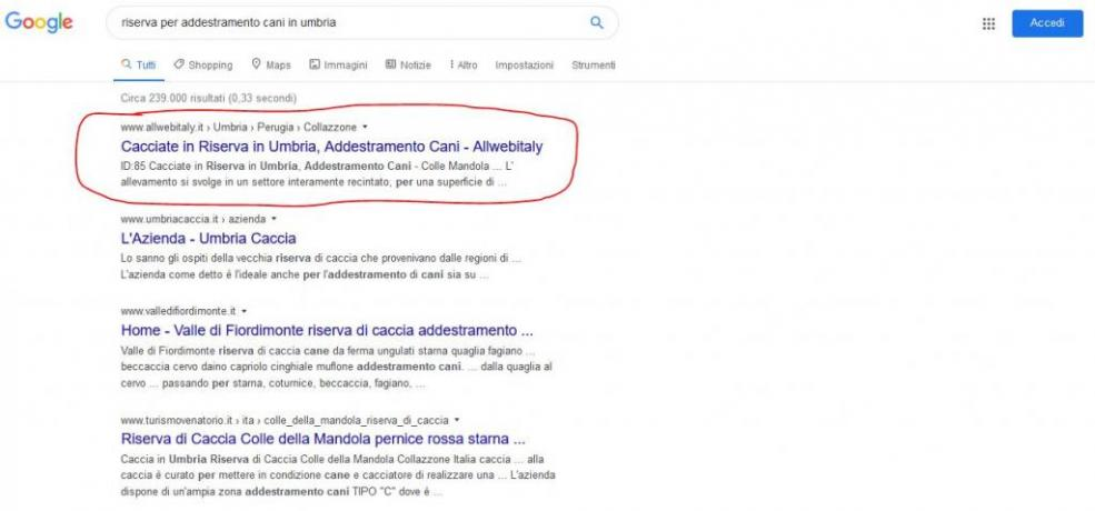 Pubblicita Geolocalizzanta con Google: Addestramento-cani-Umbria