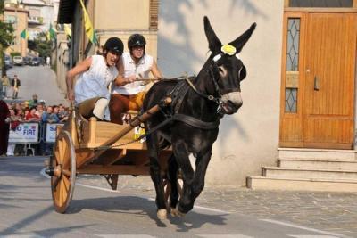 Manifestazioni e cortei storici in Umbria