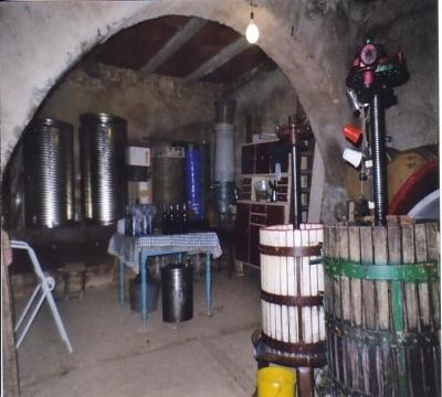 degustazioni vino e prodotti tipici