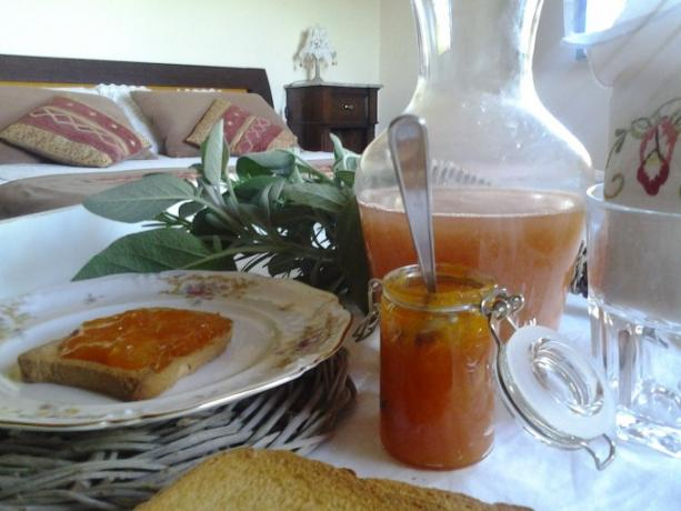 Colazione genuina Casale vicino Orvieto