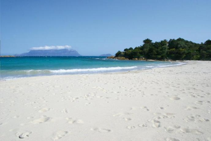 Spiaggia bianca vicino all'hotel il Panorama