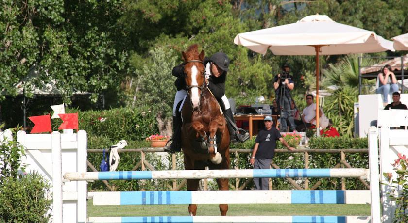 Corsi di equitazione e dressage