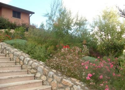 Servizio giardino e terrazzo sempre in fiore Realizzazione ...
