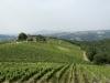 Vino in Toscana dormire e degustare B&B