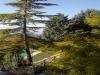 B&B L'Eremo con vista panoramica, Umbria