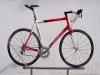 Bicicletta Specialized