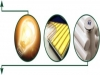 pannelli-solari-fotovoltaici-campania