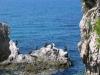 alberghi vicino: Riserva Naturale a Miramare