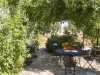 Hotels and Trulli-houses with private garden