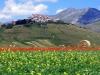 Castelluccio visto dalla piana della Fioritura