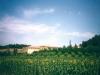 Agriturismo immerso nel verde Last Minute