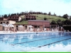 Olympionic swimming pool