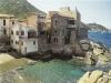 Isola del Giglio: hotel BB e agriturismi prezzi ec