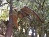 Le Statue del Parco di Pinocchio